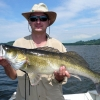 Zander, Lino lake, 6,5 kg, 86 cm