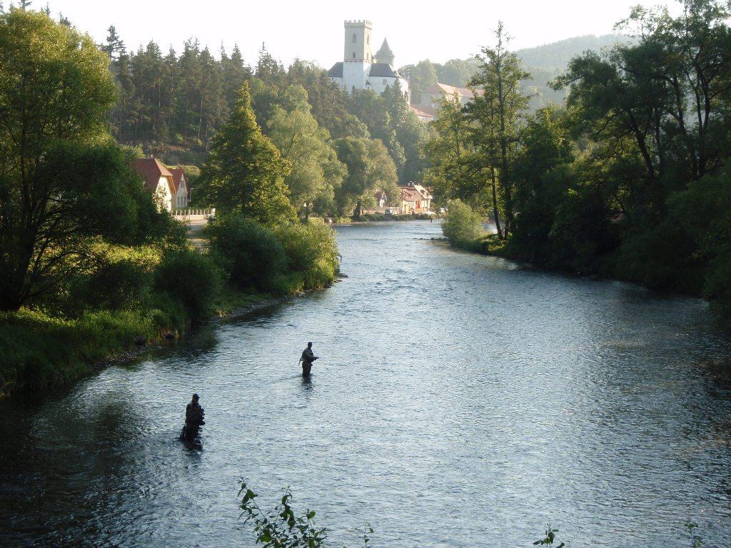 morning fishing under Rožmberk castle